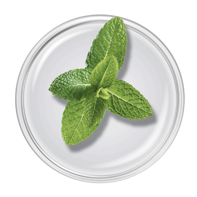 Spearmint Oil